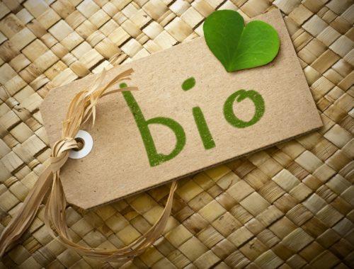 Les produits biocontrôle
