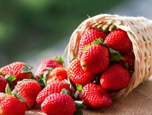 La fraise française