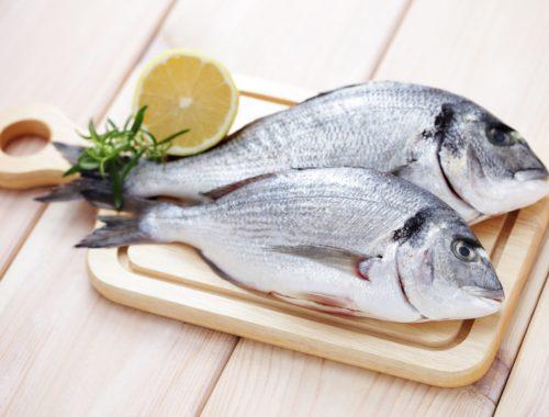 Les poissons ont eux aussi une saisonnalité